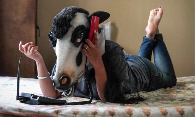 देश में महिलाओं से ज्यादा गाय हैं सुरक्षित, सोशल मीडिया पर वायरल