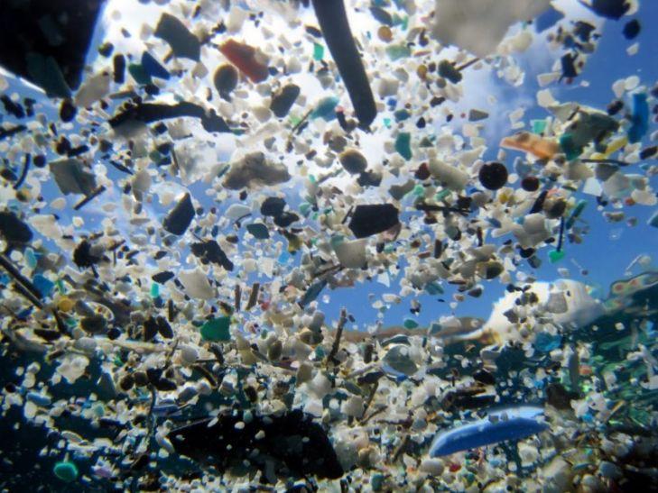 महासागरों में तैर रहे हैं 5.25 लाख करोड़ प्लास्टिक के टुकड़े