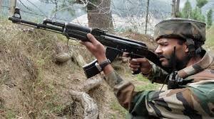 LoC पर भारतीय सेना का मुंहतोड़ जवाब, 2 पाक सैनिक ढेर