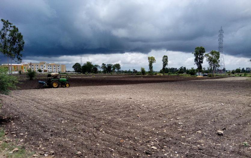 धूप निकलते ही किसानों नेे किया खेतों का रुख, बोवनी में जुटे