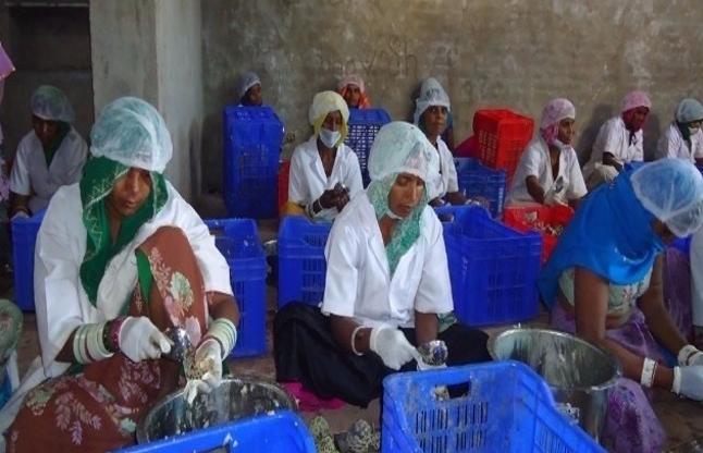 मिसालः चार आदिवासी महिलाएं कभी सड़क पर बेचती थीं फल, आज करती हैं करोड़ों का कारोबार