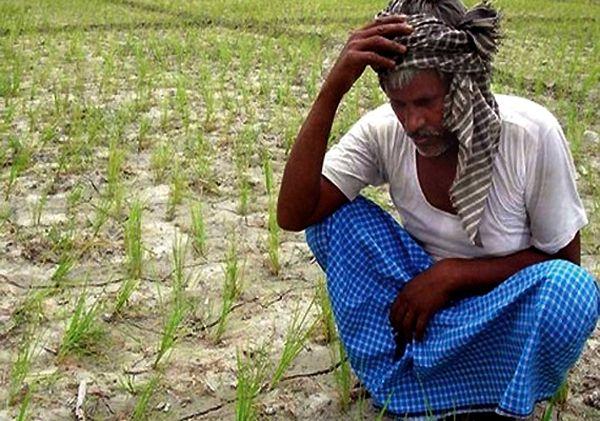 MP के किसानों की सरकार बनी दुश्मन, जानिए क्यों अन्नदाता को नहीं मिल रही एक तोला खाद
