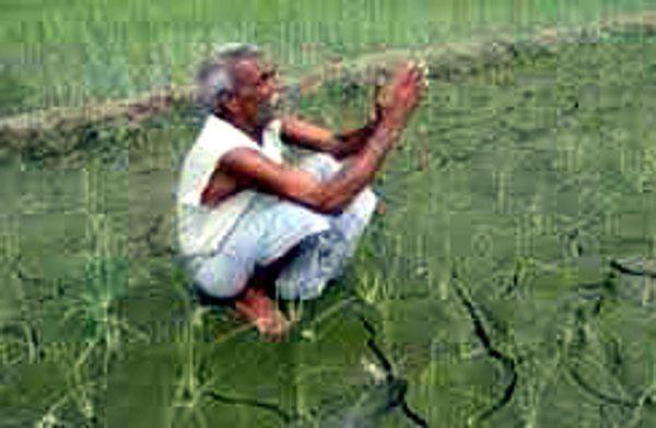 किसान ने जमीन बेचकर चुकाया खाद बीज का ऋण, देखिए सुशासन की असली कहानी