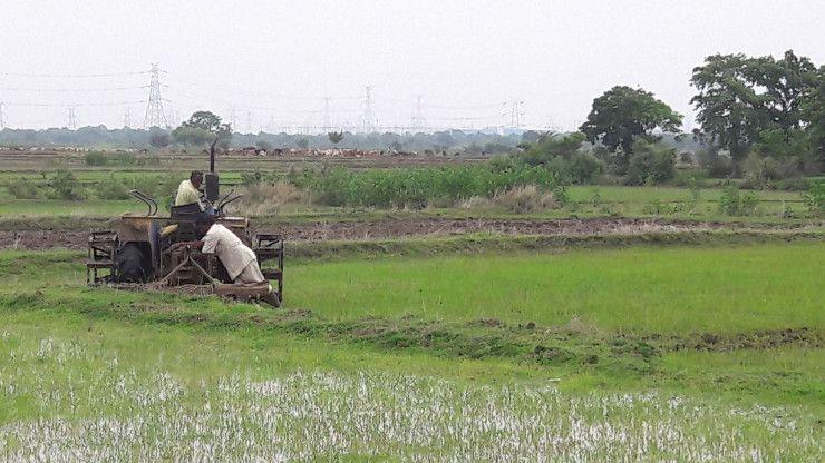Video- निर्देश के बावजूद शासकीय जगह पर फिर शुरू हुई खेती