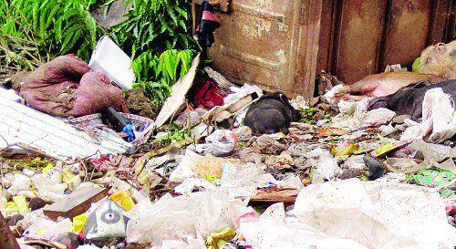 शहर में लखनऊ की तर्ज पर होगी सफाई