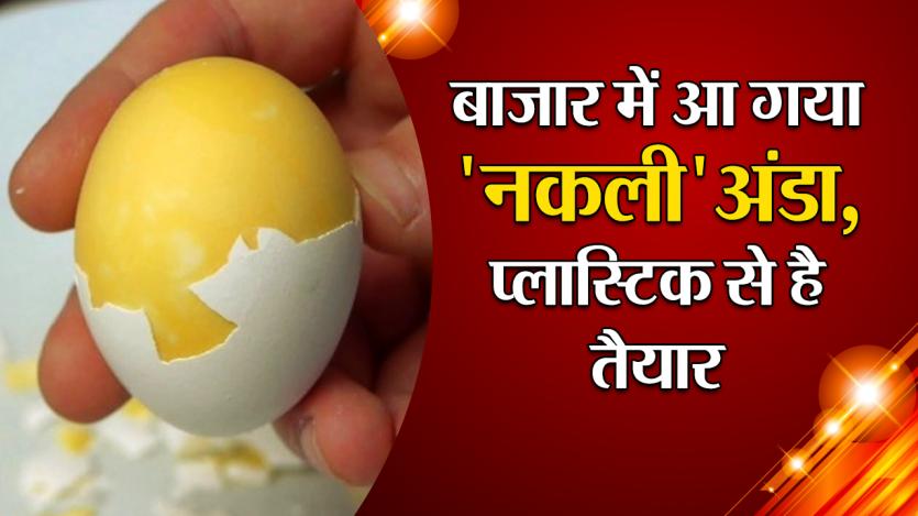 बाजार में आ गया 'नकली' अंडा, प्लास्टिक से है तैयार