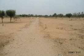 सीकर के इस परिवार ने साढ़े 3 करोड़ की जमीन दान कर पाई अनगिनत दुआएं