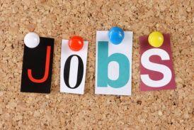 SSC ने निकाली 183 पदों पर भर्ती, एसबीआई में भी नौकरी पाने का मौका