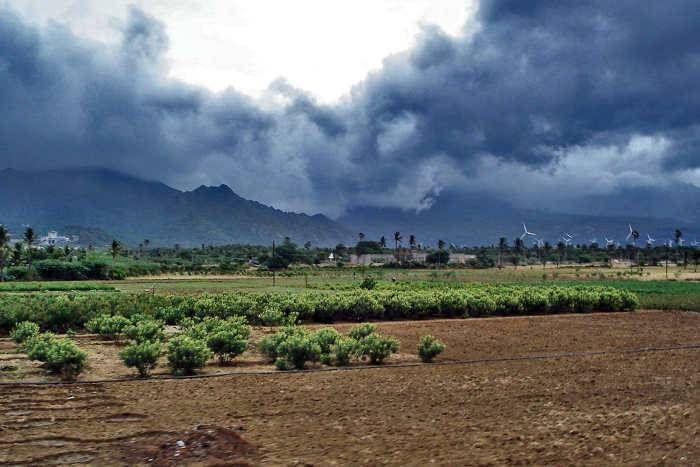पश्चिम बंगाल और सिक्किम में दक्षिण पश्चिम मानसून सक्रिय, राजस्थान में गरज के साथ बारिश के आसार