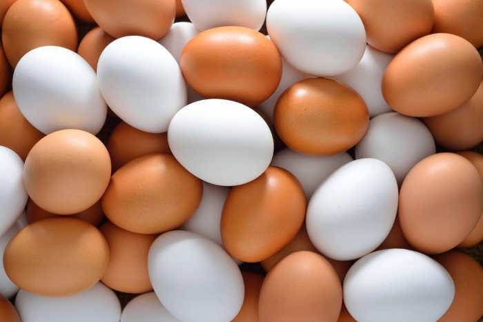 स्कूल में मिड-डे मील के दौरान प्लास्टिक के अंडे परोसने का मामला, पुलिस ने शुरू की जांच