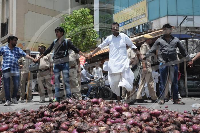 onion farmers of Jodhpur