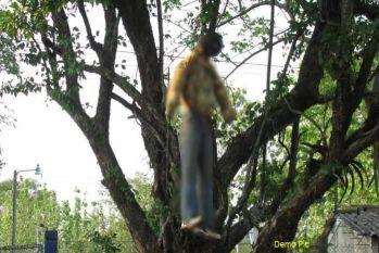 रात को हुआ था पत्नी से झगड़ा, सुबह मिला पेड़ से लटका