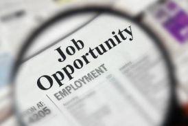 सरकारी नौकरी, सैकड़ों पदों के लिए निकली भर्ती, आज ही करें आवदेन