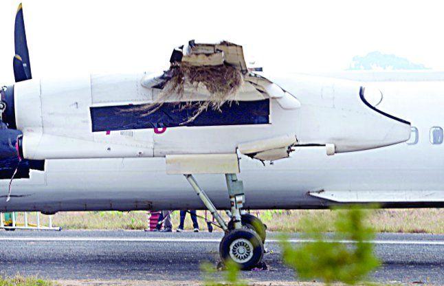 ब्लैक बॉक्स बताएगा एयरपोर्ट प्रबंधन का सच-झूठ